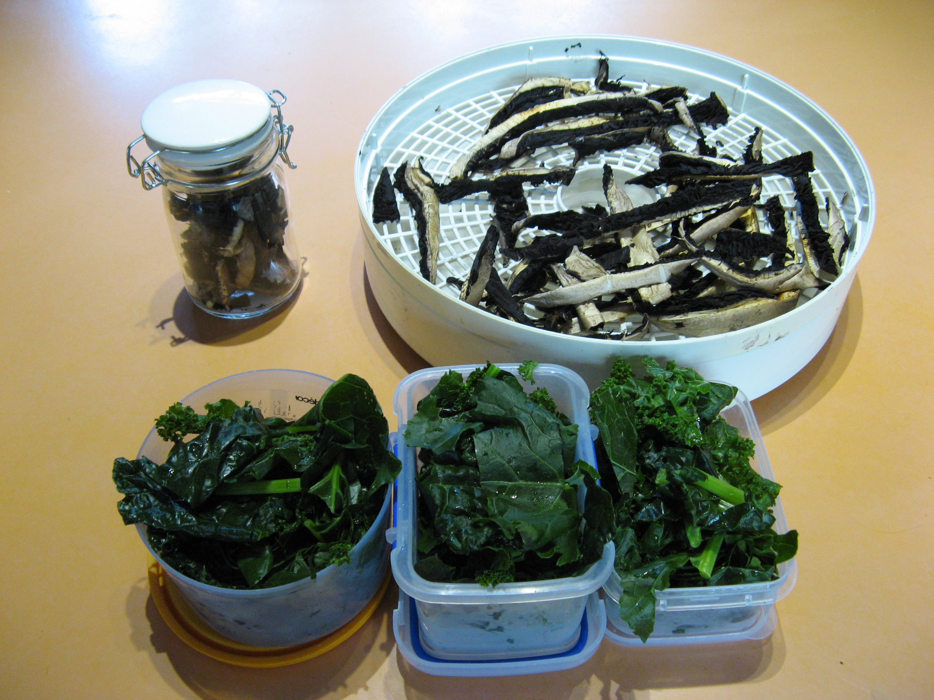 Steamed kale for the freezer, and dried mushrooms