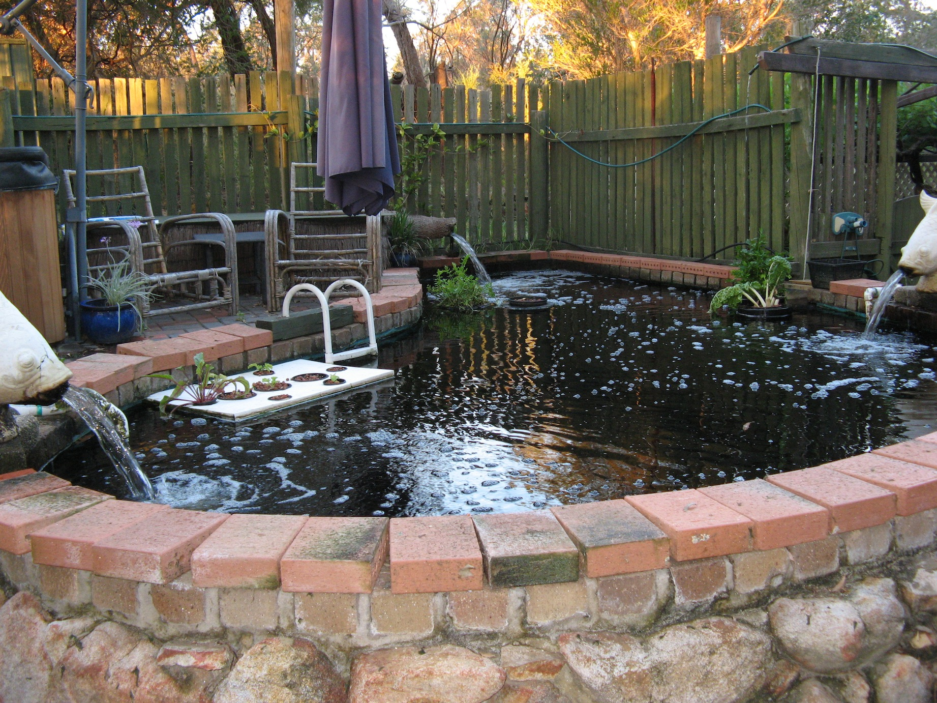 Swimming pool conversion mccarthy park for Swimming pool koi pond conversion