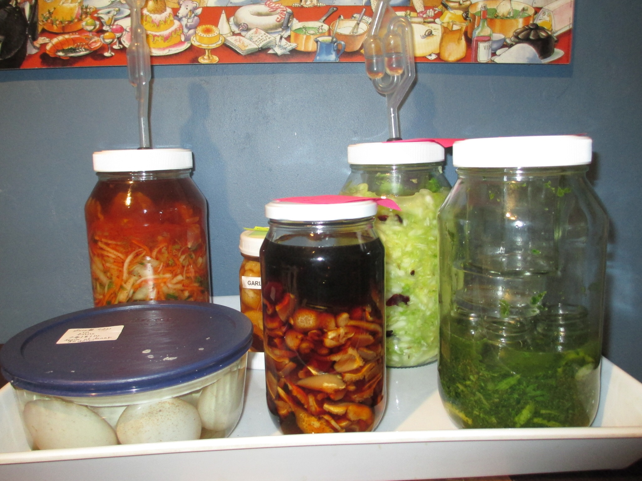Ferments on the go